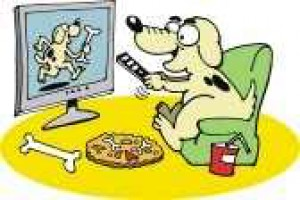 10099212-dog-watching-television.jpg